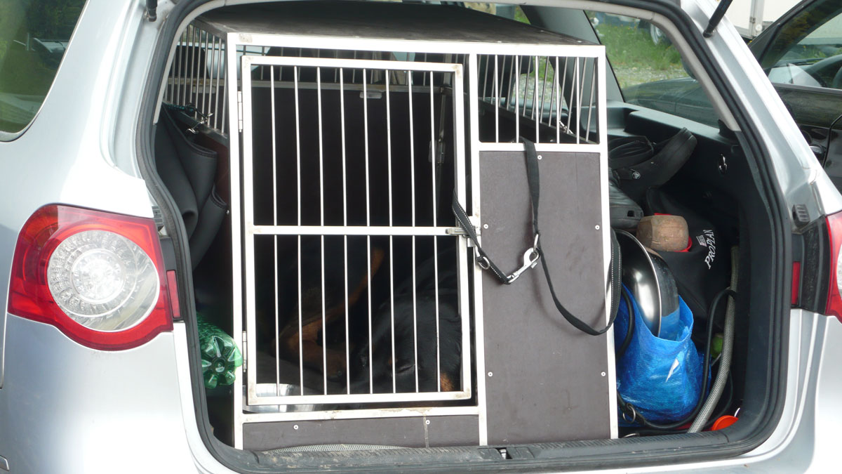 die richtige Hundetransportbox